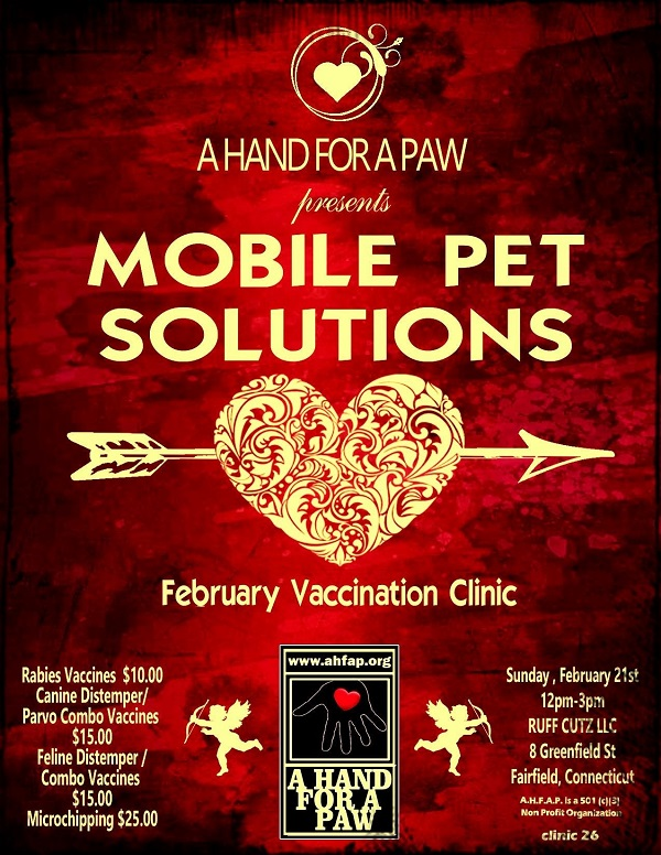 February Vaccination Clinic Flyer