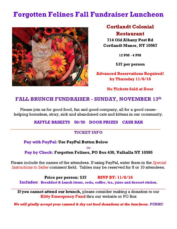 Fall Fundraiser Luncheon FLyer